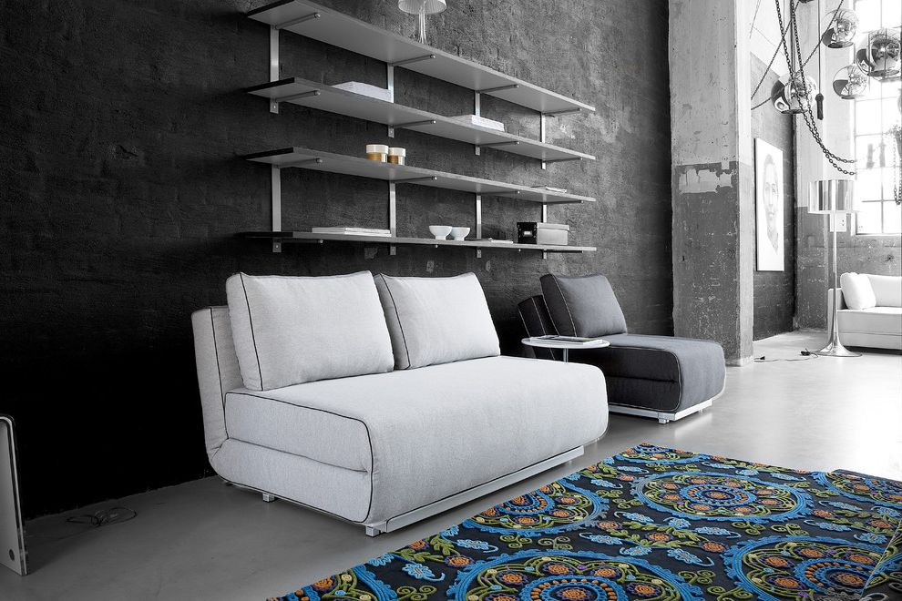 Nice Sofa Beds with Modern Home Office  and Modern