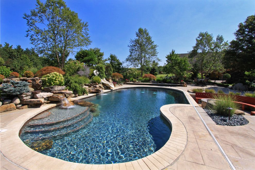 Platinum Pools Az with Traditional Pool Also Aquatic Backyard Curved Bench Curved Pool Garden Hardscaping Landscaping Ornamental Grass Patio Pavers Plants Pool Trim Rocks Slide Stacked Stone Steps Water Feature Waterfall