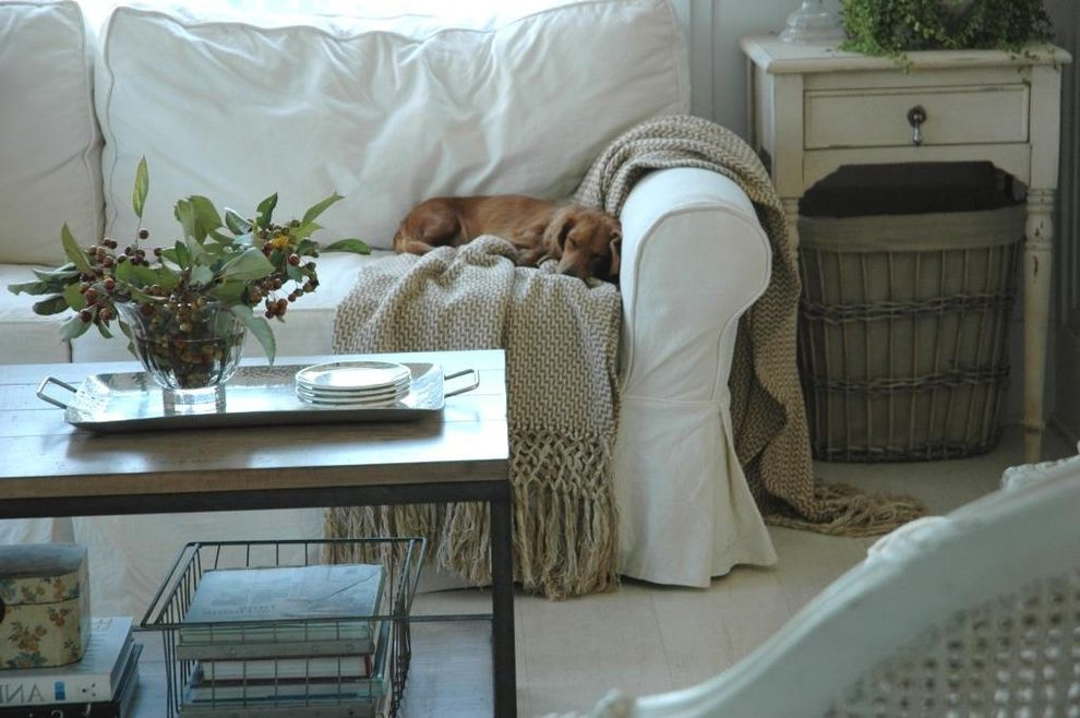 White Slip Covered Sofa with Shabby Chic Style Living Room  and Dog Farmhouse Flea Market French Modern Country Shabby Chic Vintage Wire Basket