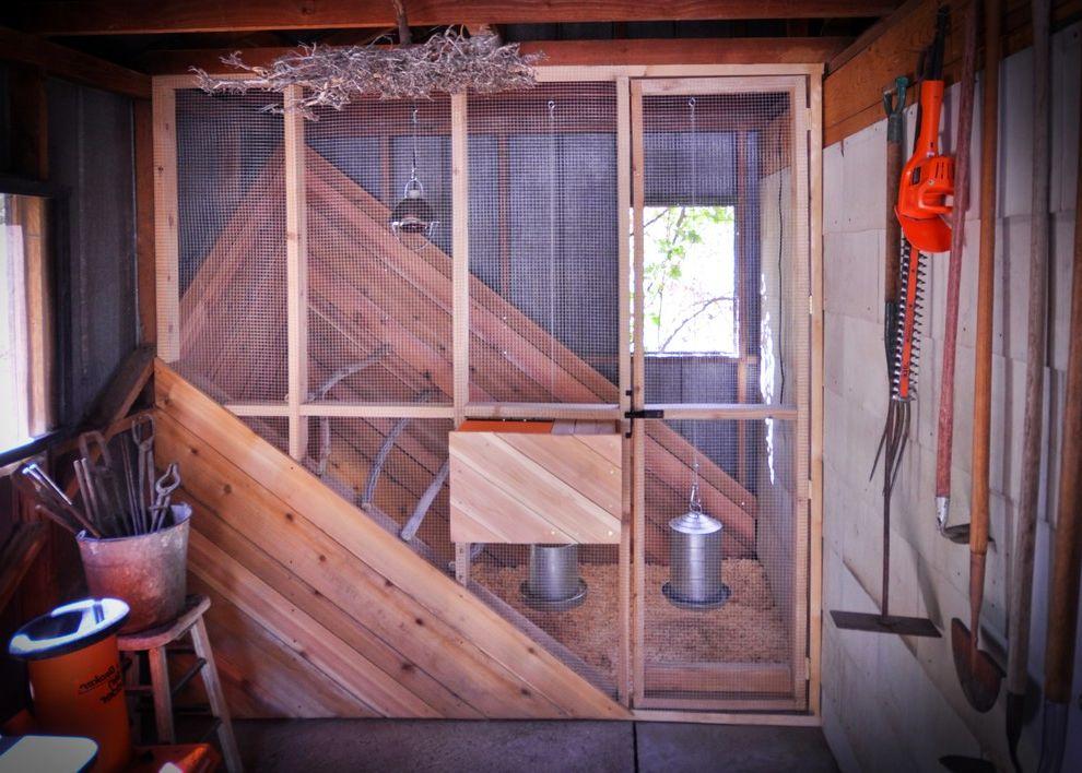 Wimsatt Building Supplies   Contemporary Shed  and Cedar Panks Chicken Coop Hen Box