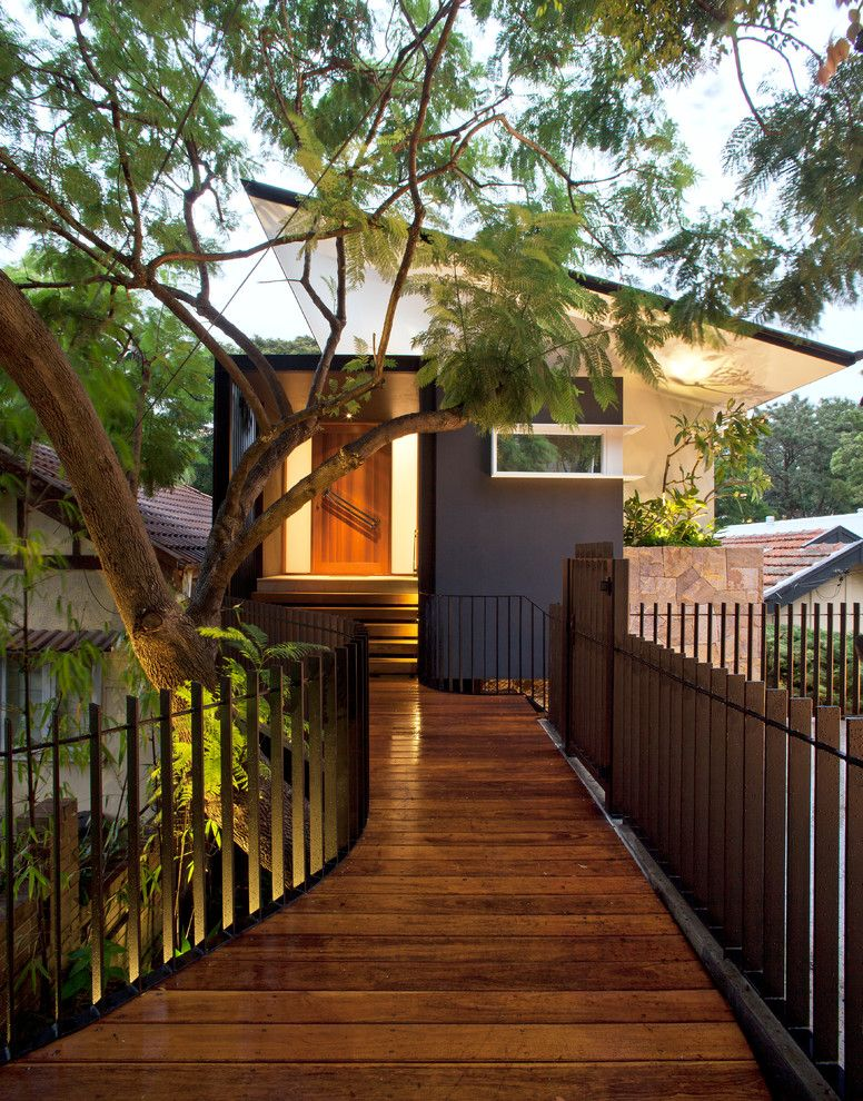 City Lights on Fig with Contemporary Exterior  and Balustrade Bridge Cedar Door Floating Roof Freestanding House Garden Lighting Path Pivot Door Sandstone Cladding Slope Slotted Window Steps Sydney Trees Uplights Walkway