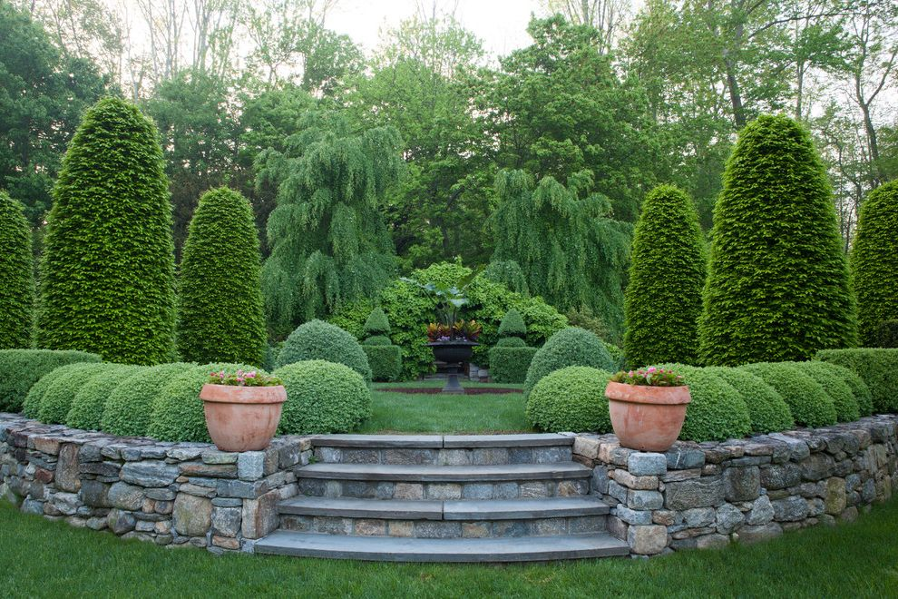 Fake Rock Covers with Traditional Landscape  and Boxwood Grass Holly Hornbeam Lawn Potted Plants Stone Steps Stone Wall Topiaries