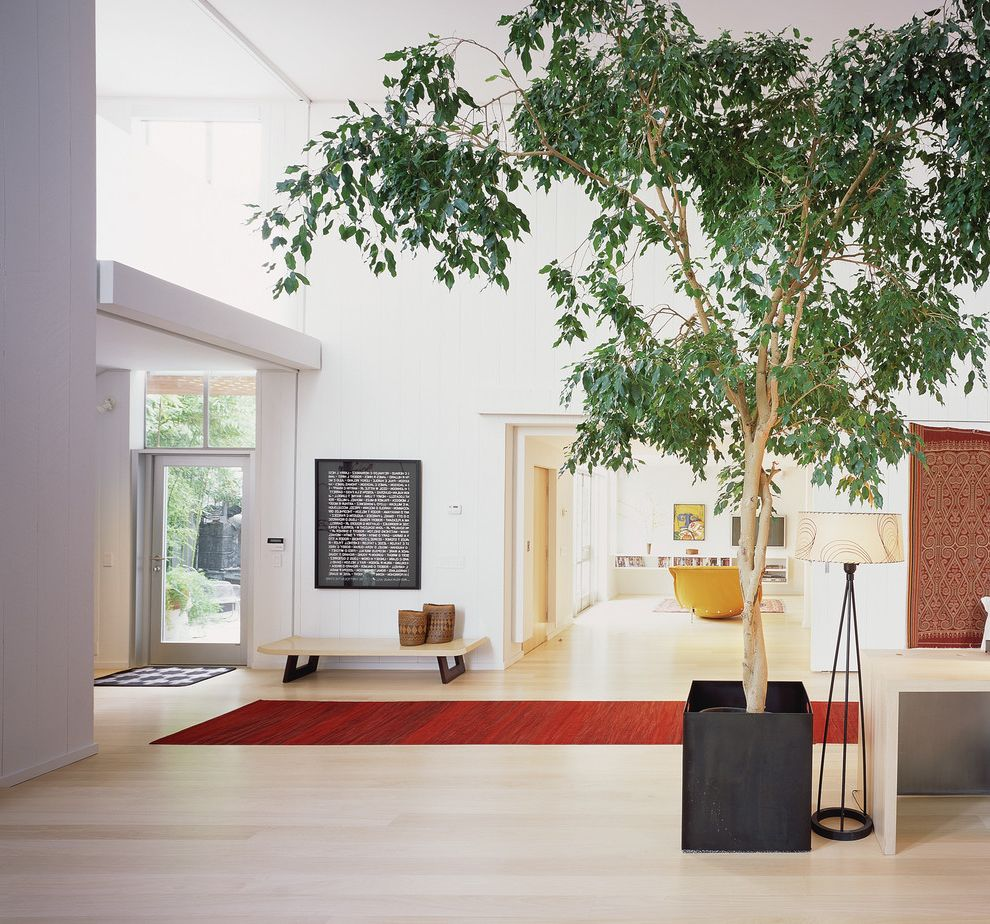 Lowes Hawaii   Modern Entry  and Entrance Floor Lamp Glass Door High Ceiling Light Wood Floor Low Bench Natural Lighting Potted Tree Red Runner Transom Windows Two Story Ceiling White Walls Word Art