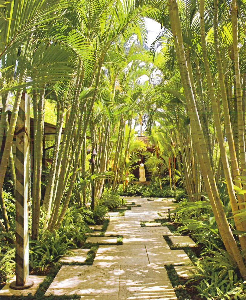 Lowes Hawaii   Tropical Landscape  and Asian Landscape Bamboo Hawaiian Landscape Palm Tree Corridor Palm Tree Path Palm Trees Random Stone Paving Stone Paving Tropical Garden