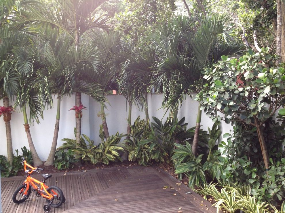 Lowes Palm Coast with Tropical Landscape  and Deck Garden Palm Trees Planting Plants Pool