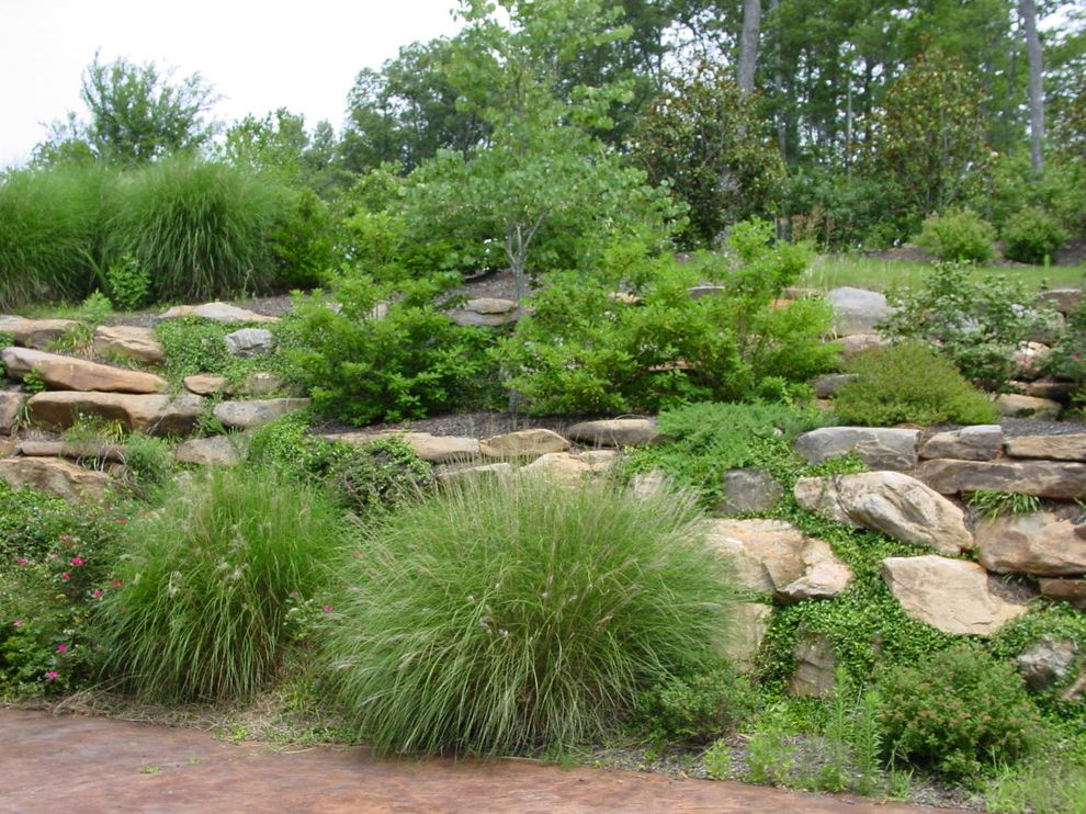 What is a Berm   Traditional Landscape Also Berm Boulders Grass Ground Cover Hillside Path Planting Bed Rocks Stained Concrete Stones Terracing Whimsy