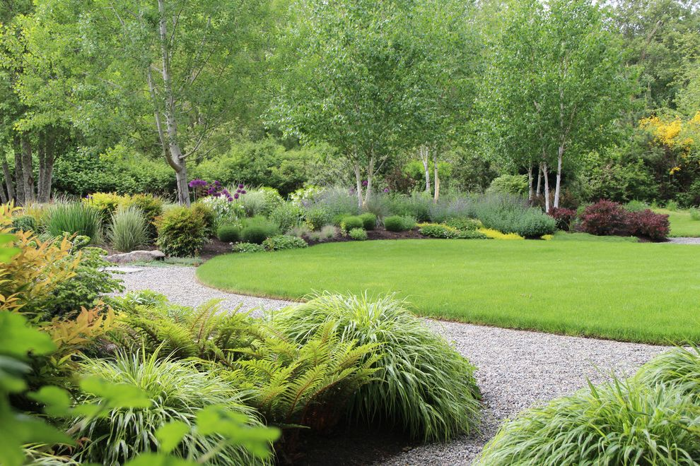 What is a Berm   Traditional Landscape  and Bainbridge Island Birch Chartreuse Foliage Gravel Path Lawn Naturalistic Planting Ornamental Grasses Path Walkway Wooded Garden