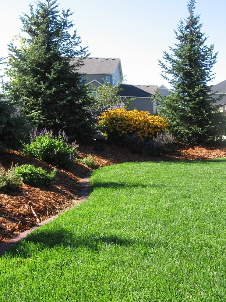 What is a Berm with Traditional Landscape  and Lawn Low Maintenance Garden Perennial Gardens Sun Gardens