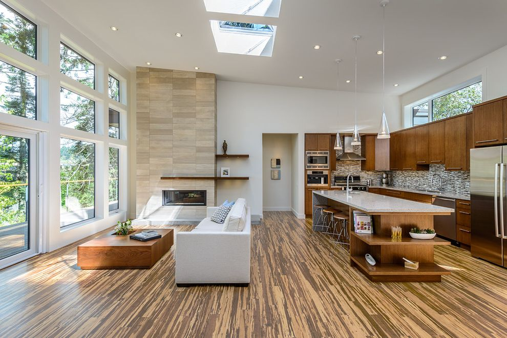 Carbonized Bamboo Flooring   Contemporary Living Room Also Bamboo Flooring Clean Lines Contemporary