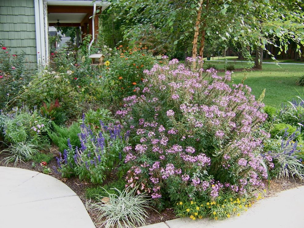 City of Flower Mound with Eclectic Landscape Also Birch Tree Blue Cottage Garden Flower Bed Flower Gardens Grass Lawn Organic Gardens Ornamental Edible Gardens Perennial Pink Planter Turf