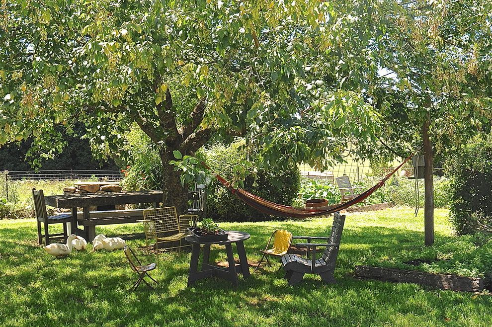 Down to Earth Lawn Care   Rustic Landscape  and Dining Table and Bench Grass Hammock My Houzz Outdoor Chairs Outdoor Dining Tree
