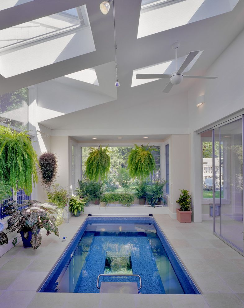 Endless Pools Cost   Modern Pool Also Conservatory Endless Pool Greenhouse Hanging Plants Indoor Pool Skylights Small Pool