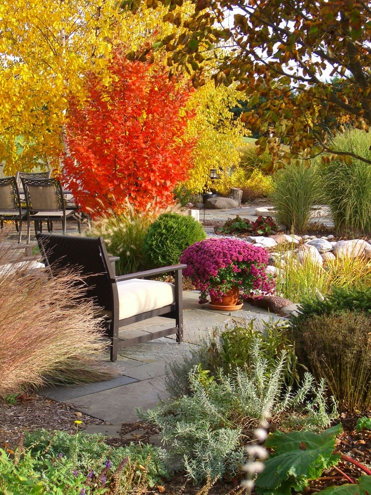 Fairfield Garden Center with Traditional Landscape Also a Garden for Every Season Fall Colors Mums Planting for Year Round Interest Seasonal Interest