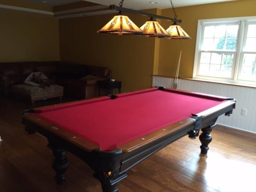 Greensboro Pools with Traditional Family Room  and Billard Table Charlotte Billiard Table Greensboro Billiards Billiards Room Family Room Olhausen Pool Table Pool Table Charlotte Pool Table Greensboro Pool Table Light Rec Room Recreation Room Toltec