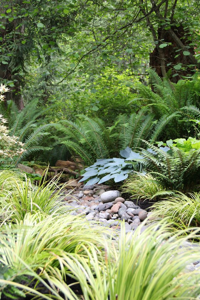 Joy Creek Nursery with Contemporary Landscape Also Bainbridge Island Creek Dry Creek Forest Native Natural Naturalistic Northwest Modern Northwest Style Rain Garden Serene Shade