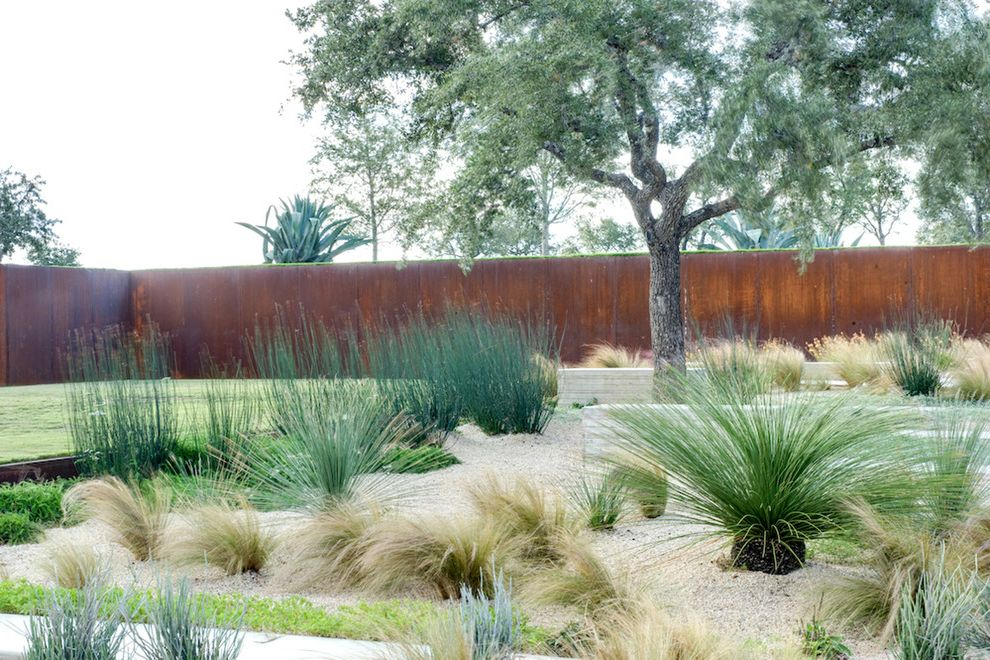 Kyle Tx Weather with Industrial Landscape Also Arid Concrete Paving Cor Ten Desert Modern Entrance Entry Entry Gate Grasses Gravel Low Water Mass Planting Metal Fence Minimal Pavers Rust Specimen Tree