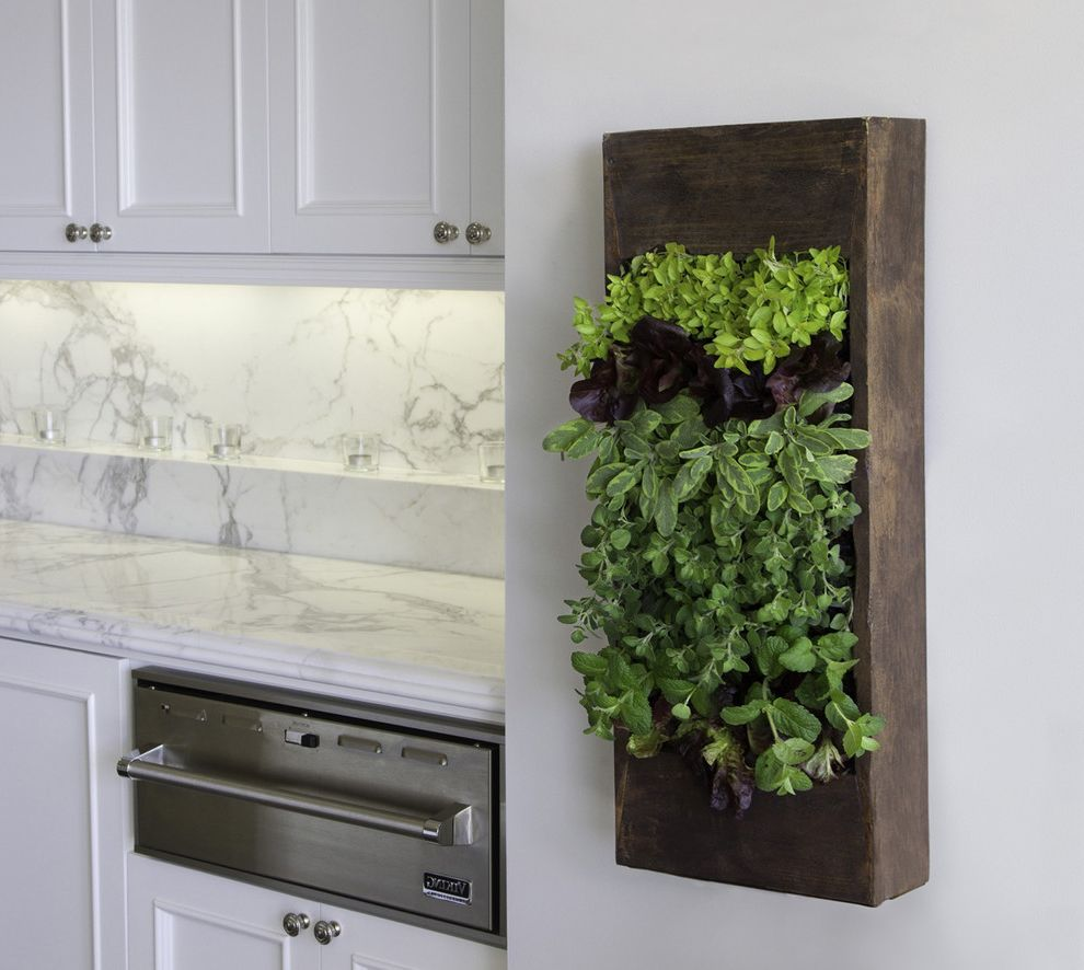 Make Your Own Doormat   Contemporary Kitchen  and Frame and Panel Cabinets Herbs Kitchen Garden Ledge Marble Counters Rustic Wood Box Salvaged Wood Stainless Steel Appliances Votives Warming Oven