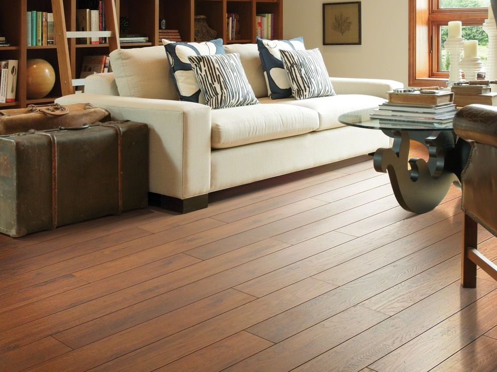 Really Cheap Floors   Traditional Living Room  and Shaw Flooring Shaw Floors