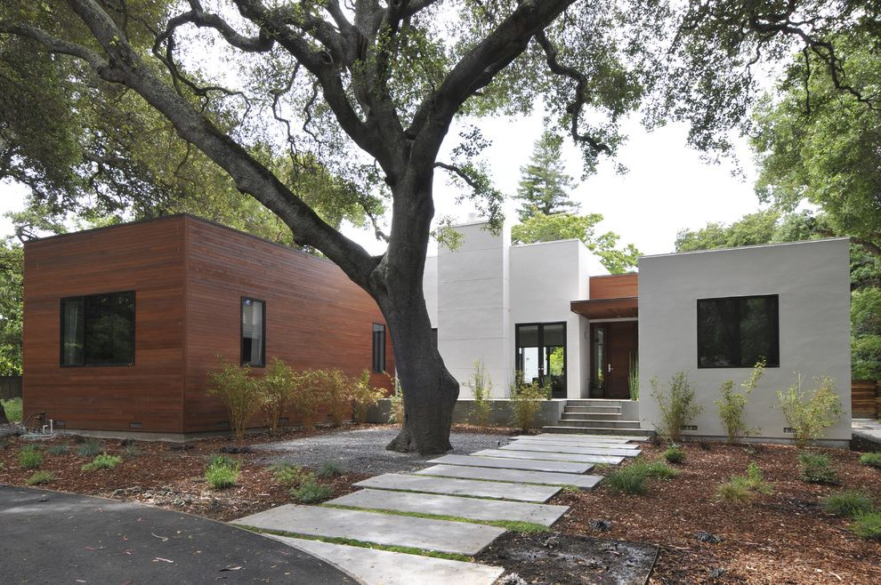 Rectangular Pavers   Contemporary Exterior  and Entrance Entry Flat Roof Front Door Geometric Geometry Path Pavers Roof Line Specimen Tree Walkway Wood Siding