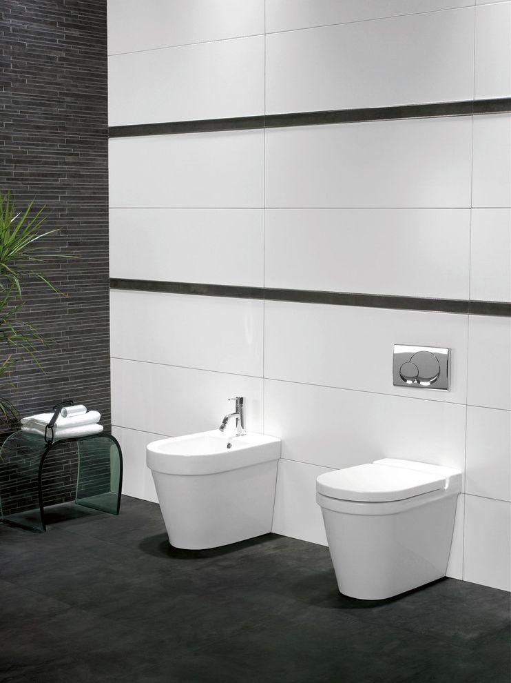 Toilet Bidet Combo   Modern Bathroom  and Bathroom Beday Gray Floor Grey Liner Master Bath Toilet White Porcelain Walls