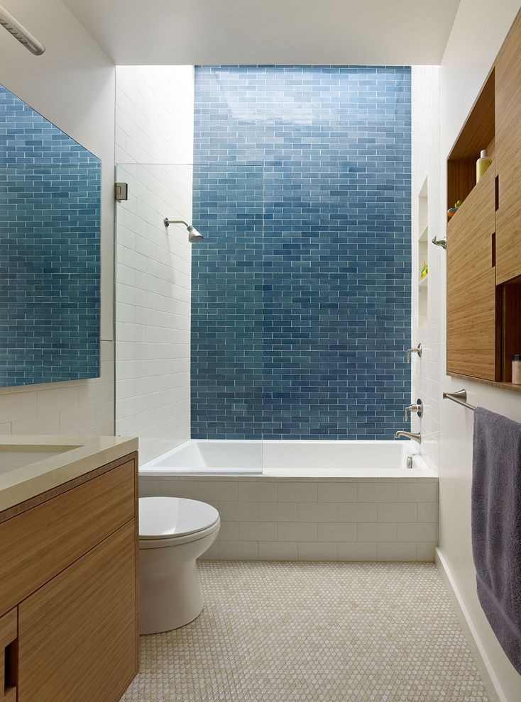 Blue Sky Pest Control with Contemporary Bathroom  and Blue Tile Skylight