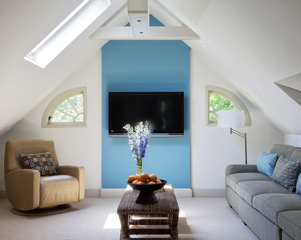 Blue Sky Pest Control with Eclectic Family Room Also Accent Color Accent Wall Attic Baseboards Blue Walls Curved Windows Skylights Sloped Ceiling Vaulted Ceiling Wall Mount Tv