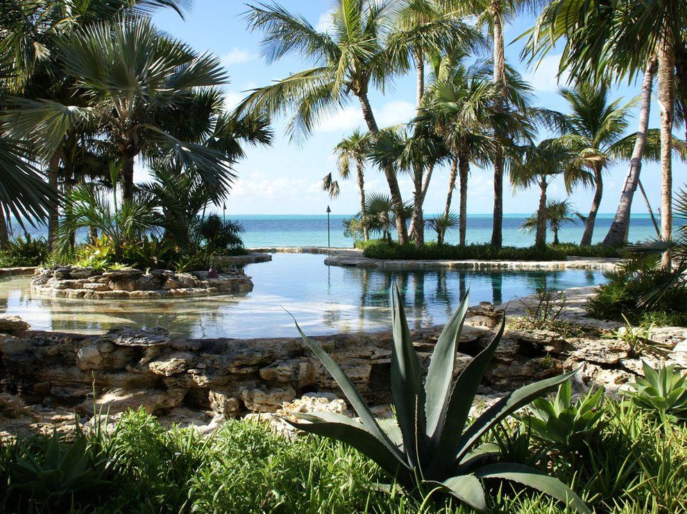 Islander Pools   Tropical Landscape Also Ocean Ocean View Oceanfront Oversized Pool Palm Tree Pool Pool Island Pool Rock Island Rock Landscape Rock Pool Rock Pool Trim
