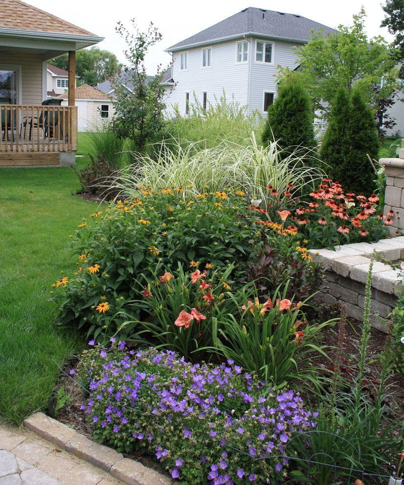 Lowes Pensacola with Traditional Landscape Also Backyard Balck Eyed Susan Coneflower Echinacea Garden Ornamental Grass Rudebeckia Stone Terrace