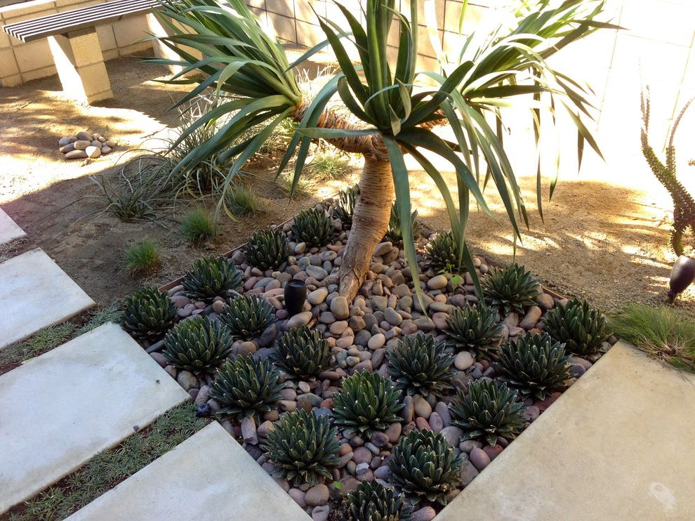 Lowes Victoria Tx with Modern Landscape  and Agave Concrete Contemporary Landscape Pebble Planting River Rock Rock Stepping Stones Succulent