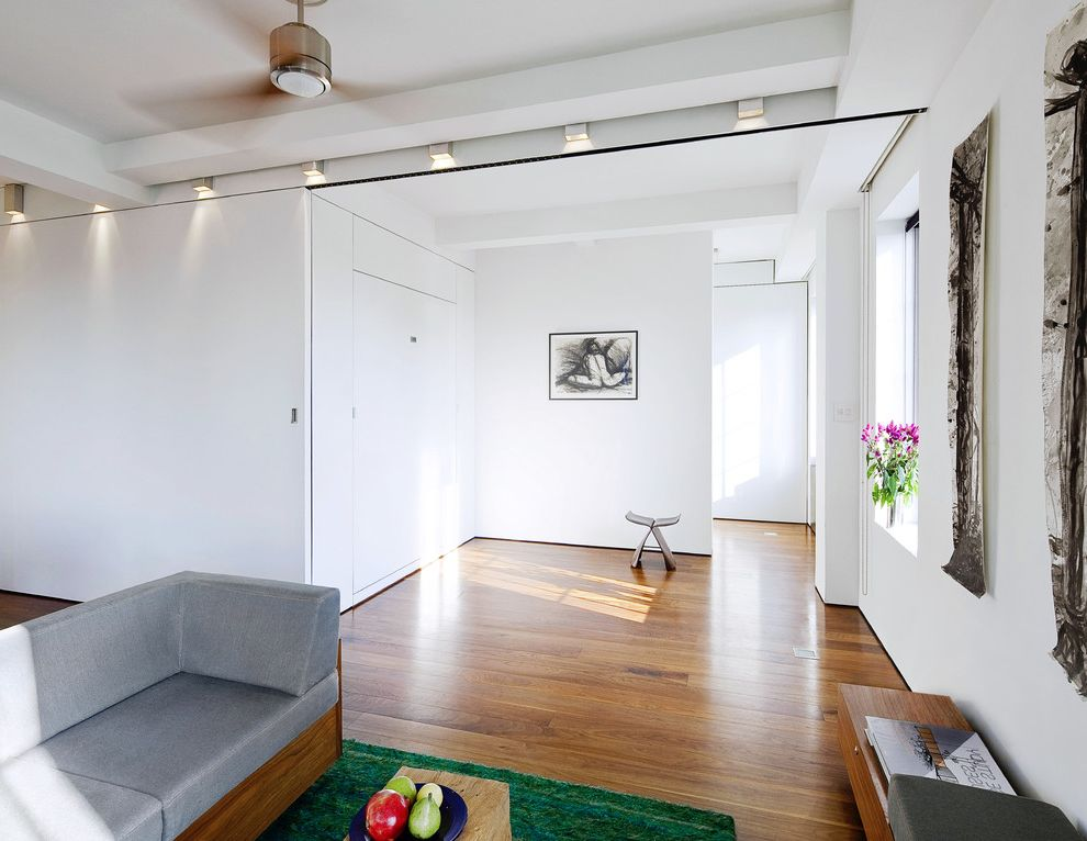 Lucy's Nyc with Modern Living Room Also Ceiling Fan Gray Sofa Loft Murphy Bed Up Transformer Apartment Wall Art White Walls Wood Floors