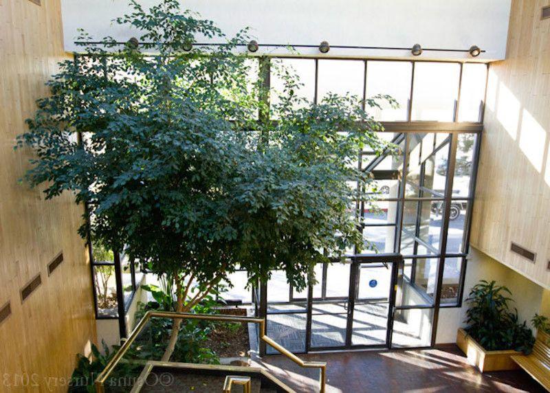 Osuna Nursery    Entry Also Flowers Garden Products Garden Supplies Landscape Supples Nursery Perennial Plants