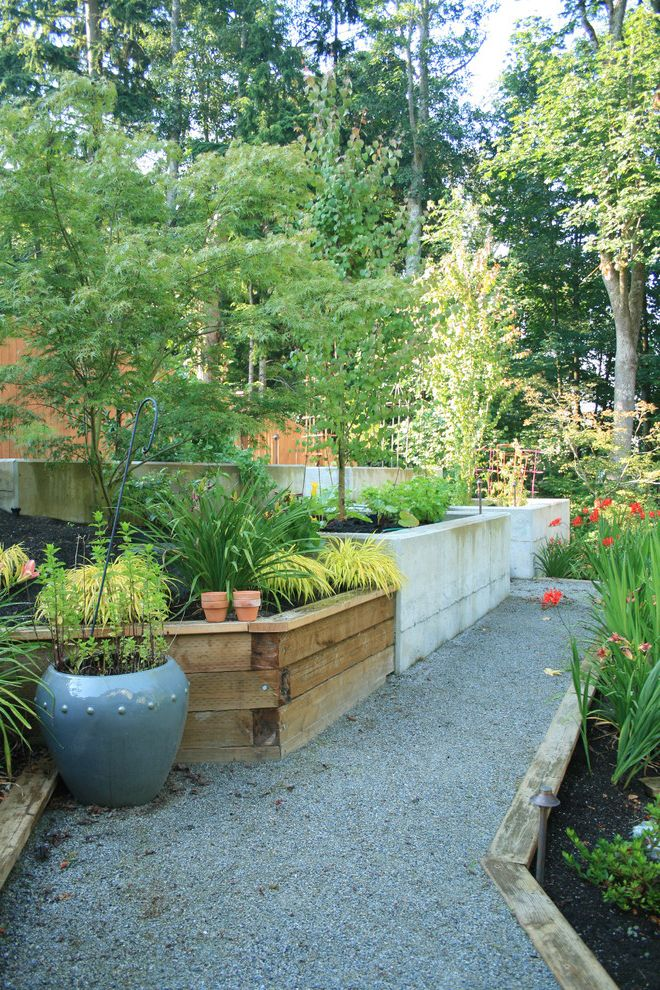 Painting Pressure Treated Wood   Modern Landscape Also Banyon Tree Concrete Retainer Wall Container Edible Gardening Garden Gravel Path Landscape Potted Plant Pottery Raised Bed Steep Slope Trees Wood Wood Retainer Wall