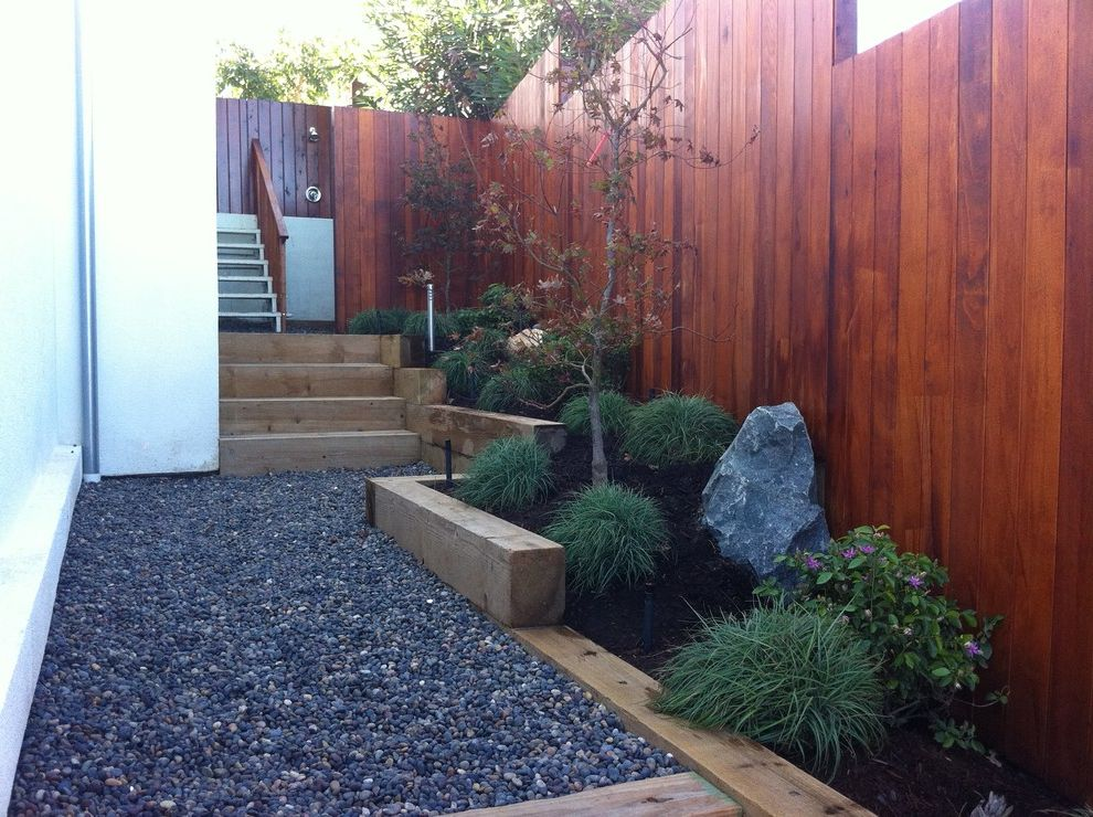 Painting Pressure Treated Wood with Modern Landscape  and Japanese Maple Landscape Timbers Mexican Beach Pebble Orange County Outdoor Shower Path Pea Gravel Planting Design San Clemente Shade Plants Side Yard Stairs Steps Wood Zen