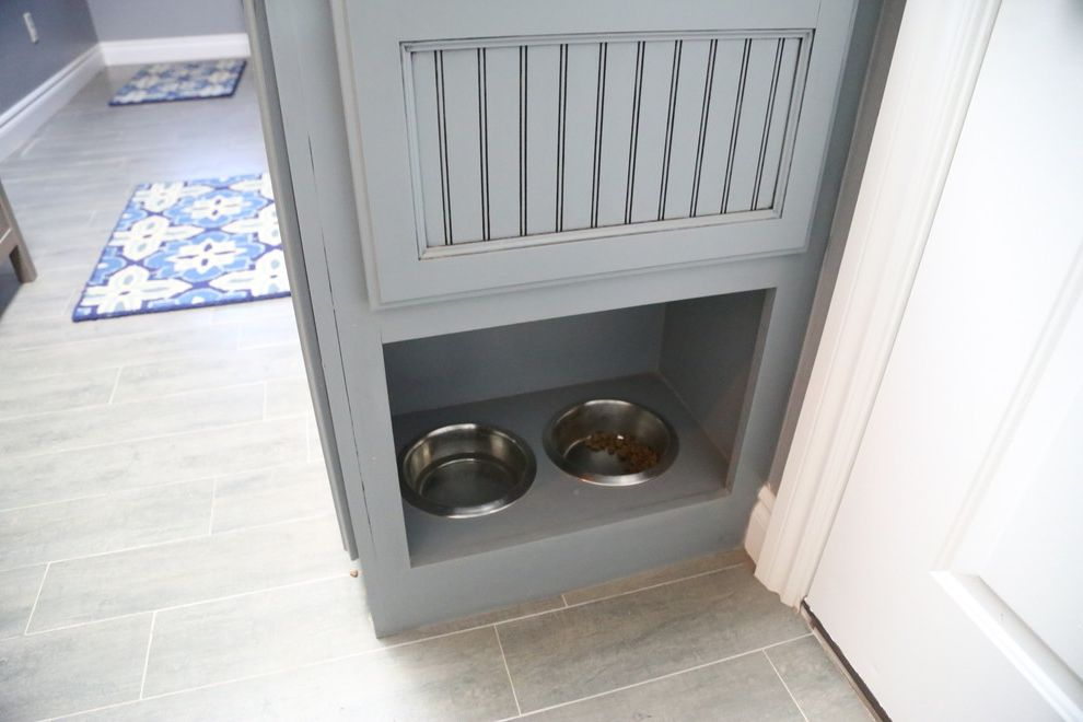 Pets on Broadway with Contemporary Laundry Room  and Blue Cabinets Cat Bowls Dog Bowls Contemporary Wood Floor Drying Racks Drying Racks and Airers Kitchen Countertops Pet Bowls Feeding Pet Care Recycled Glass Tile Tile Pattern
