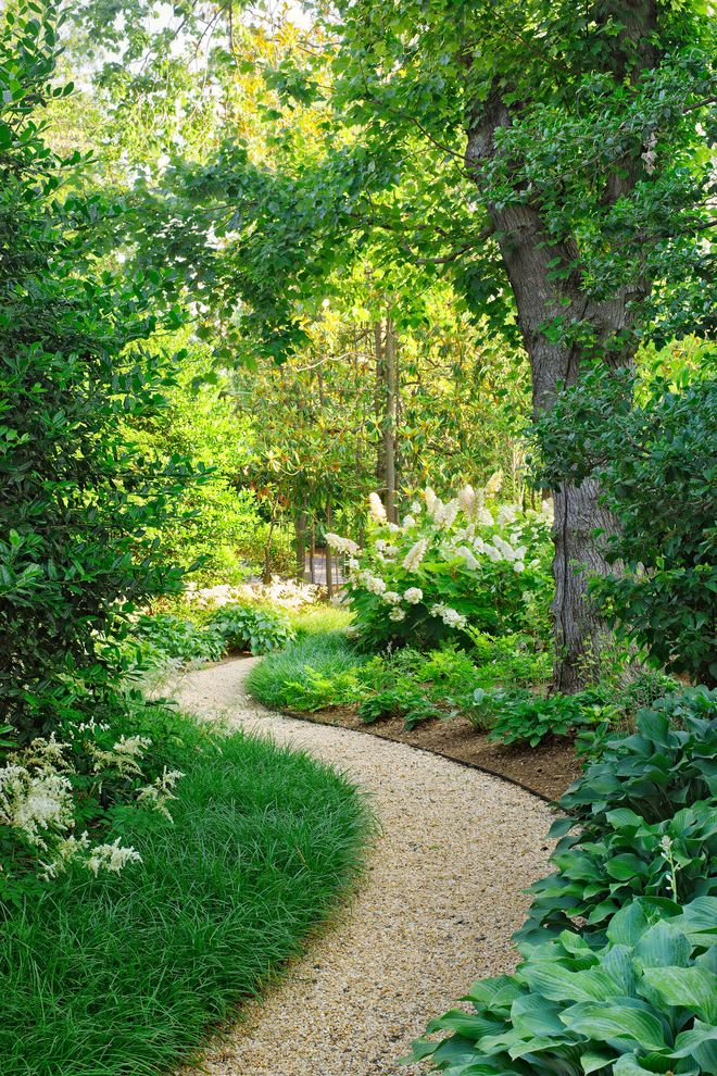 Pioneer Sand and Gravel   Traditional Landscape Also Astilbe Curved Path Gravel Hosta Oakleaf Hydrangea Sinuous Path White Garden