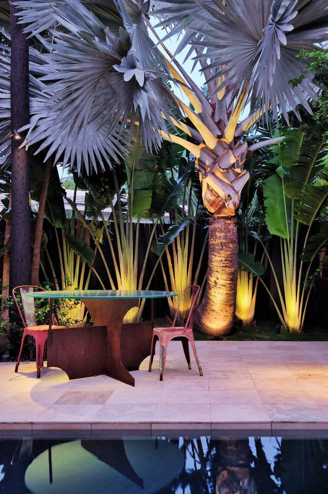 Royal Palm Theater with Contemporary Patio  and Garden Lighting Minimalist Outdoor Dining Outdoor Lighting Palm Tree Patio Furniture Pool Pool Deck Tropical Uplighting