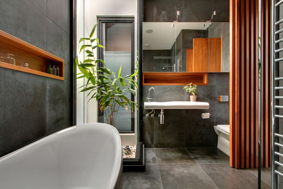 Terrarium Definition   Contemporary Bathroom Also Bamboo Bluestone Niche Plant Window Wall Wood Paneling