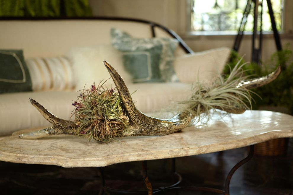 Terrarium Definition   Traditional Porch Also Air Plants Center Piece Decor Decoration Furniture Indoor Outdoor Living Marble Coffee Table Marble Table Tillandsia
