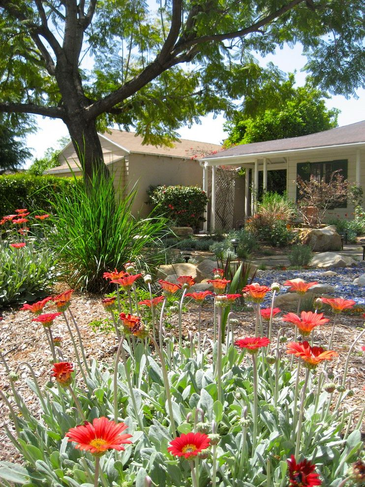 Weedman Lawn Care with Eclectic Landscape  and Dry River Bed Entrance Entry Front Yard Garden Gravel Lawn Less Landscape Los Angeles Low Water Plants