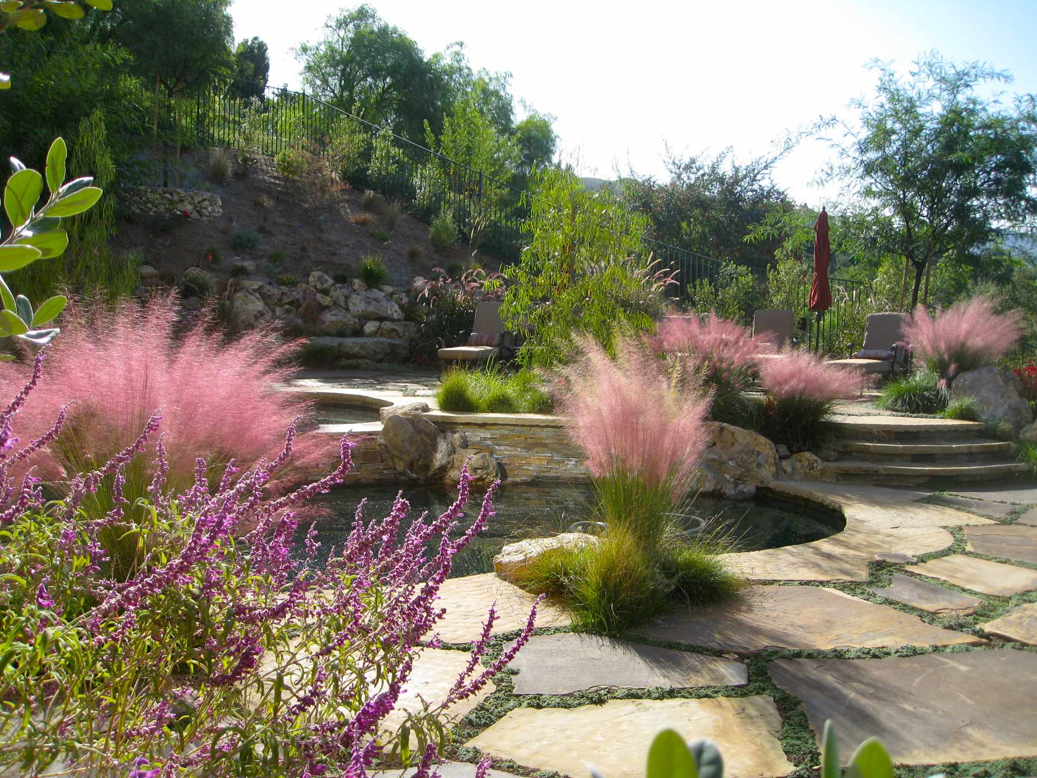 Landscape design los angeles Mediterranean Landscape hillside ornamental grasses Pool stone paving